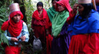 Llevan Internet a un grupo de etnias indígenas