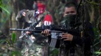 El ELN se convierte en amenaza continental y Venezuela lo refuerza : Francisco Santos