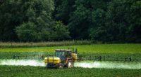 Bayer ofrece U$ 8.000 millones para frenar demandas contra el glifosato