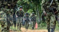 Hombres del Ejército en el Cauca se redujeron a la mitad: gobernador del departamento