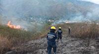 Más de la mitad de Cundinamarca, en alerta roja por riesgo de incendios