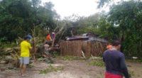 Casas destechadas y árboles caídos dejó vendaval en Puerto Wilches, Santander