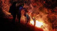 Pelea entre vecinos habría generado incendio forestal que consumió 960 hectáreas