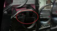 Presuntos responsables de masacre en Tacueyó quedaron grabados en video