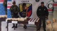 Perro de Fiscalía permitió encontrar caleta donde guardaban pasta de coca en el Cauca