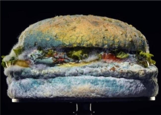 La hamburguesa podrida con la que Burger King promociona comida sin conservantes