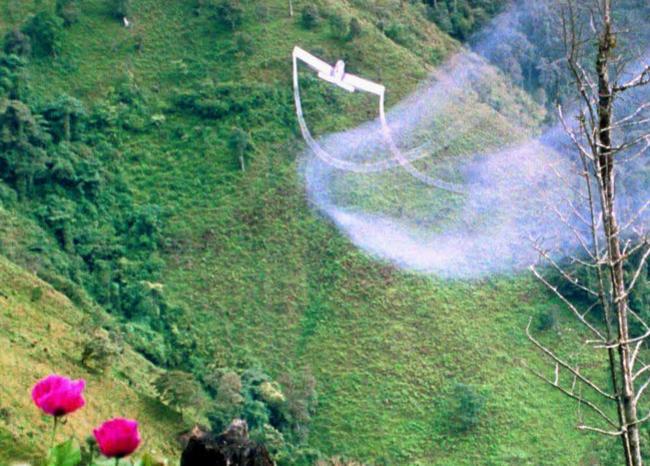 """Gobierno estudia """"maneras para asperjar"""" cultivos ilícitos en Colombia: MinInterior"""
