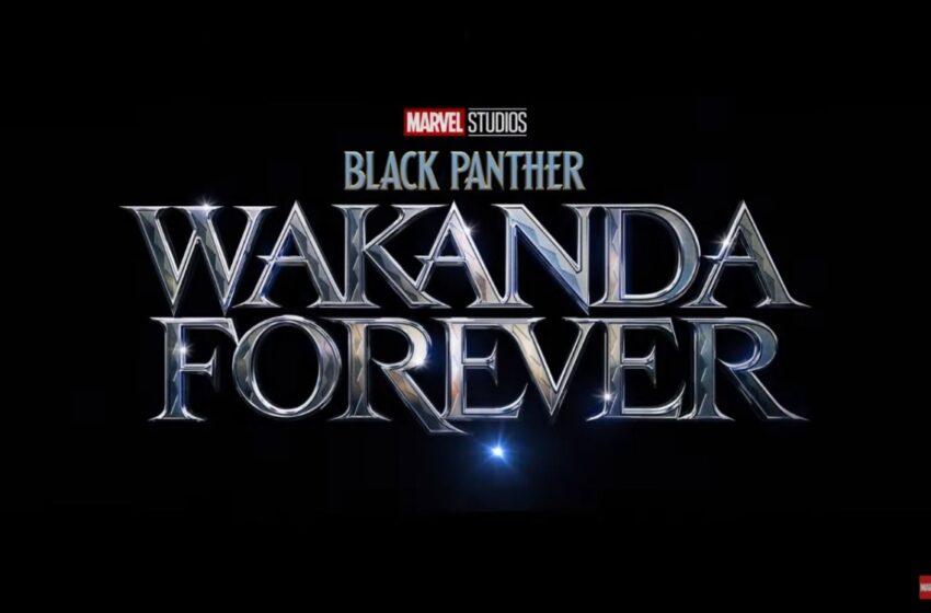 Wakanda Forever, así se llamará la nueva película de Black Panther